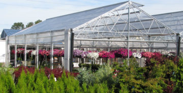 greenhouse natural ventilation system allows for optimal air flow to benefit crop gropth