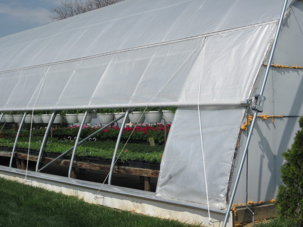 Arched Curtain For Greenhouse Ventilation Advancing